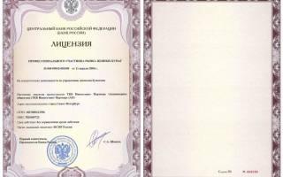 Лицензия профессионального участника рынка ценных бумаг выдается