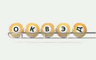 Как выбрать коды ОКВЭД для ООО?