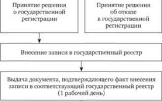 Государственная регистрация юридических лиц и ИП