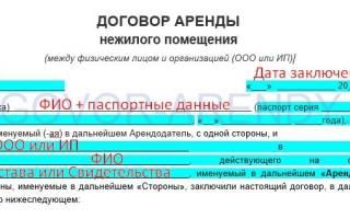 Договор аренды между физ лицом и ИП