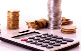 Проверяет ли налоговая ИП на ЕНВД?
