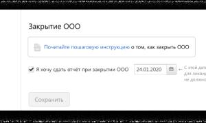 Ликвидация ООО с единственным участником пошаговая инструкция