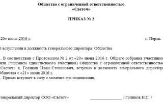Кто подписывает приказ о назначении директора ООО?