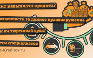 Какое наказание за неуплату кредита в России