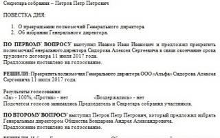 Протокол о назначении директора ООО образец 2017