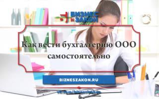 Как ведется бухгалтерский учет в ООО?