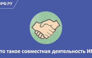 Договор совместной деятельности между ИП и ИП