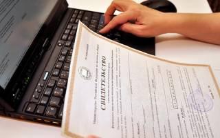 Как узнать зарегистрировали ли ИП в налоговой?