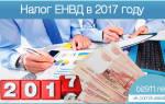 Налог ЕНВД в 2017 году для ИП
