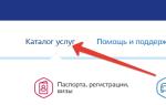 Как зарегистрировать ООО на госуслугах через директора