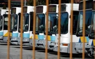 Получить лицензию на автобусные пассажирские перевозки
