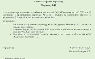 Премия директору ООО как оформить?